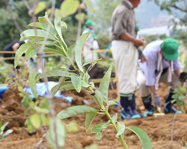 環境プロジェクト